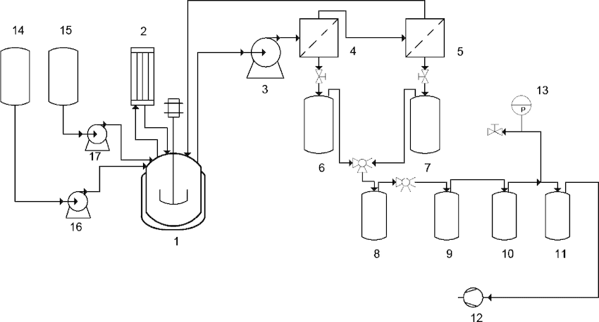 System for the continuous enzymatic production of ethyl