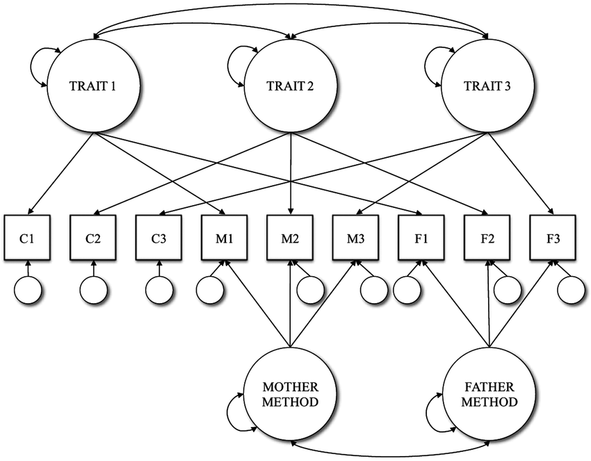 Path diagram of (a) correlated trait-correlated method (CT