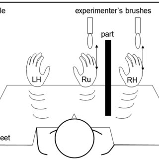 Schematic diagram of the experimental set-up in the rubber