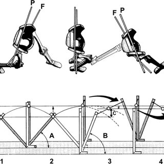 Axial rotation of the pelvis during walking. (a) Superior
