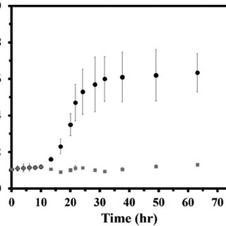 Stacked Raman spectra of Bismuth nitrate (black) and a