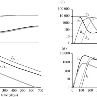 Simulation of epidemiological model 2: the transmission of