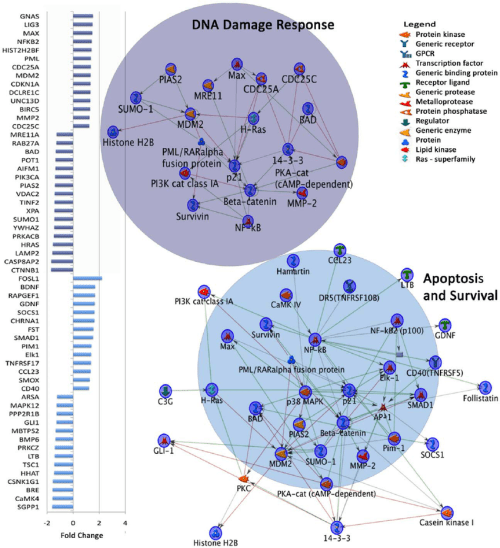 small resolution of dysregulated gene expression in top two metacore map folders in autism download scientific diagram