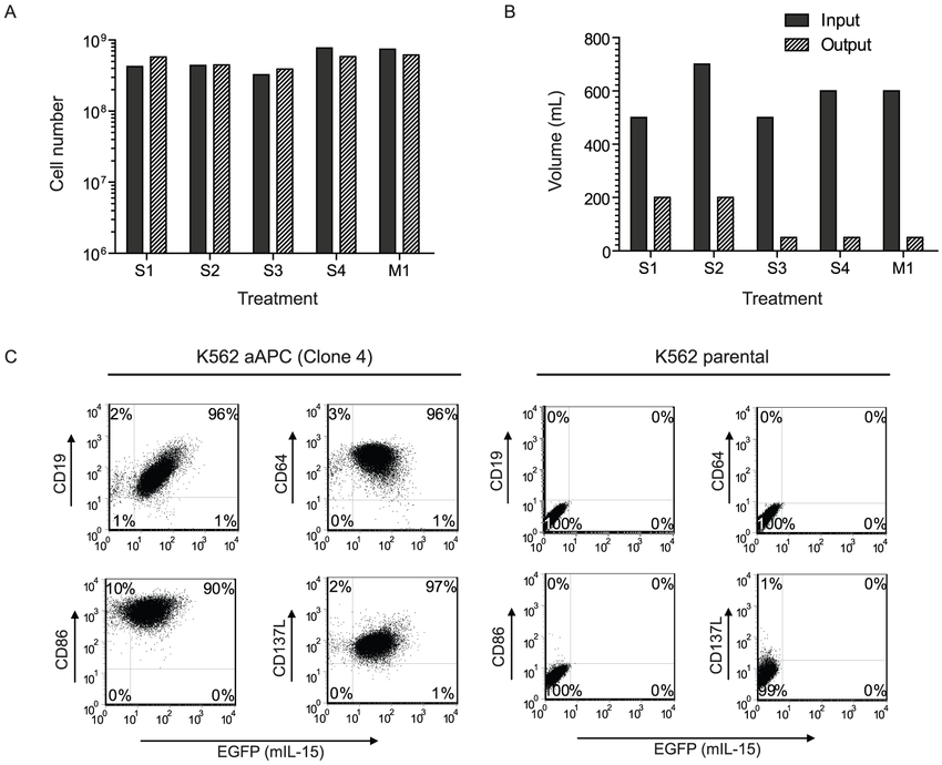 Harvest and characterization of aAPC. (A, B) Sepax volume