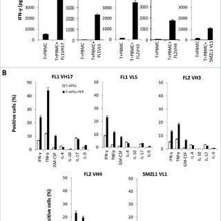 (PDF) Targeting B-cell malignancies through human B-cell
