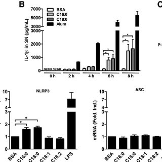 UFAs inhibit SFA-induced IL-1 ␤ maturation in PMA