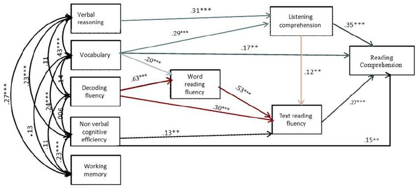 Adjusted structural equation model of reading