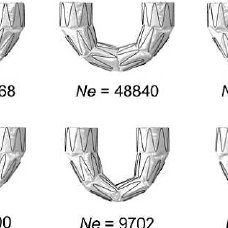 A ) Numerical modeling of the metal structure of the