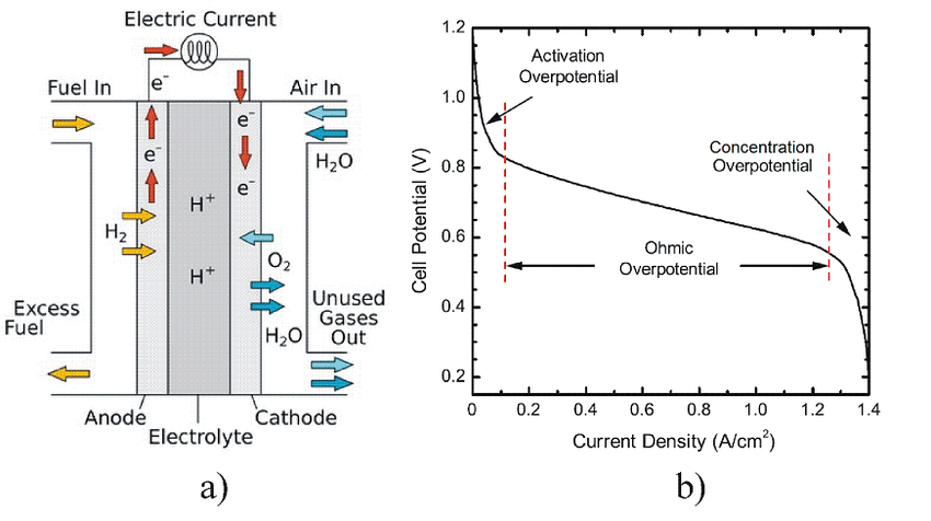 Schematic representation of the electrochemical processes