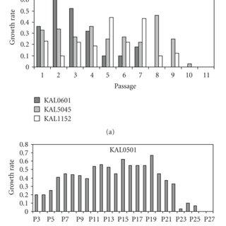 Karyotype of KAL0501 at passage P20. At this passage, two