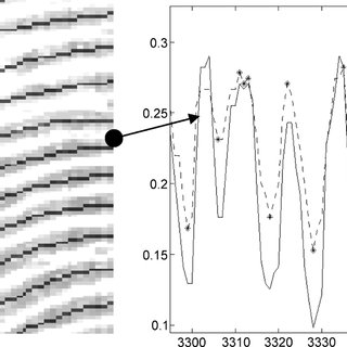 (PDF) Time-Series Detection of Perspiration as a Liveness