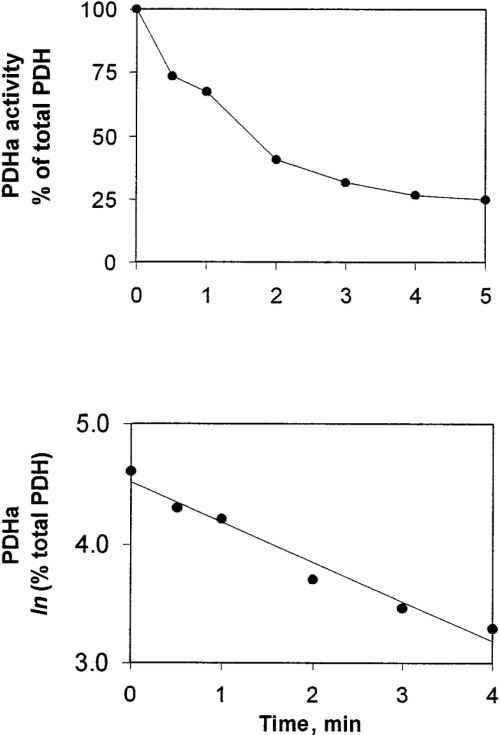 small resolution of determination of pdh kinase pdhk in human skeletal muscle top percentage of pdh in active form pdh a vs time after addition of 0 3 mm atp