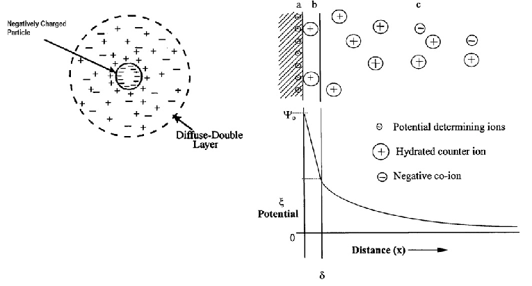 Schematic representation of the double layer and potential