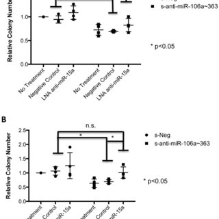 (A) Sponge expression levels in Sk-ES-1 cells as