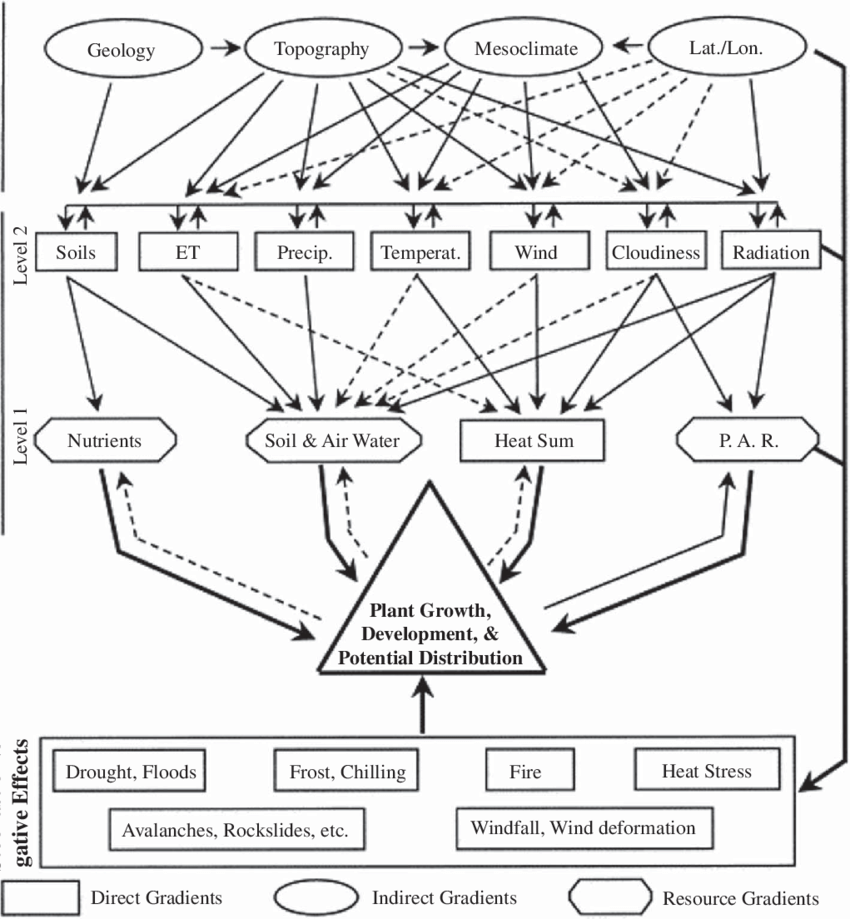 Example of a conceptual model of relationships between