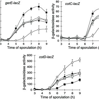 (PDF) One Perturbation of the Mother Cell Gene Regulatory