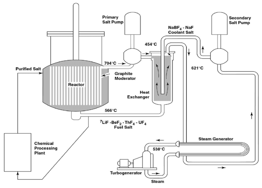 Plant layout of the single-fluid Molten Salt Breeder