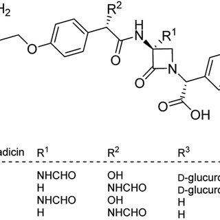 Some renowned monocyclic beta-lactam antibiotics and the