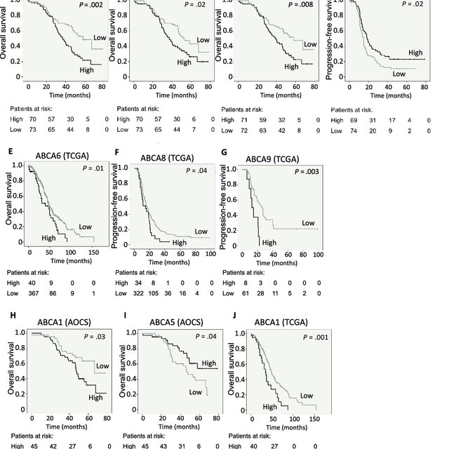 High ABCA1 protein levels in serous tumors are associated