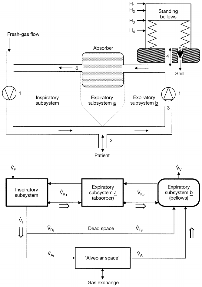 Schematic diagram of anaesthetic breathing system