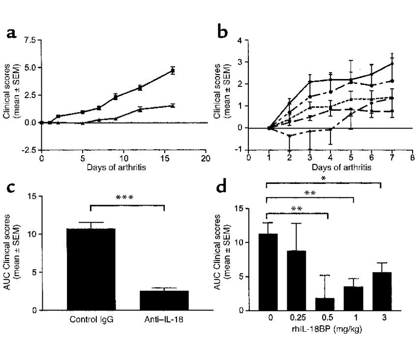 Neutralization of endogenous IL-18 decreases disease