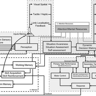 (PDF) Toward a Model of Human Information Processing for