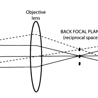 Optical ray diagram with an optical objective lens showing