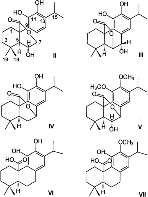 small resolution of phenolic diterpenes in rosemary leaves ii isorosmanol iii rosmanol iv carnosol v