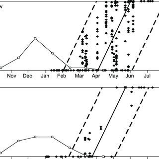 (PDF) Breeding seasonality and primary moult parameters of