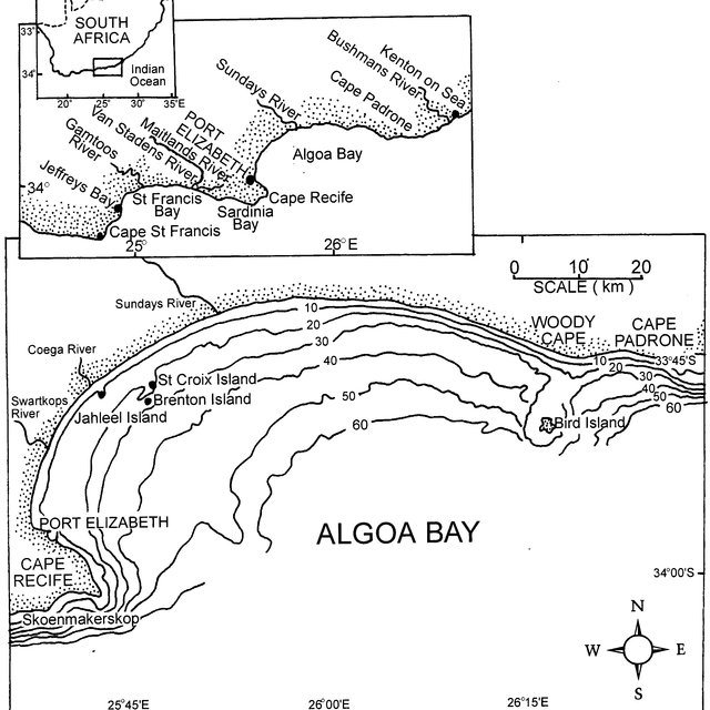 (PDF) Conservation and management of humpback dolphins