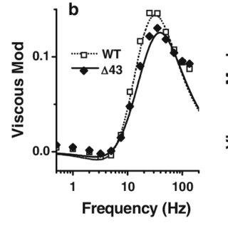 (PDF) Characterizations of myosin essential light chain's