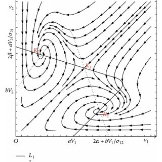 (PDF) Cooperative and Competitive Dynamics Model for