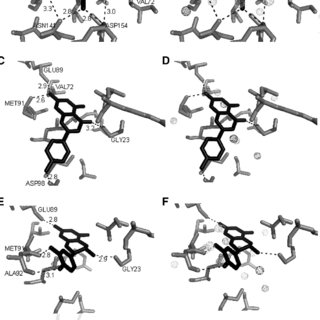 (PDF) GRID and Docking Analyses Reveal a Molecular Basis