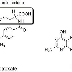 Structure of methotrexate. The molecular structure of