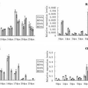 Q-PCR analysis for homeologous expression of genes with A