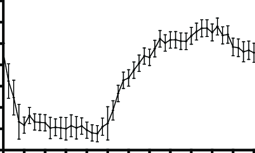 Diurnal variation of vertical air volume flux (m s −1