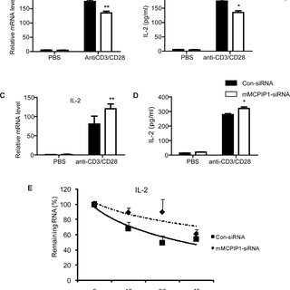 (PDF) MCPIP1 down-regulates IL-2 expression through an ARE