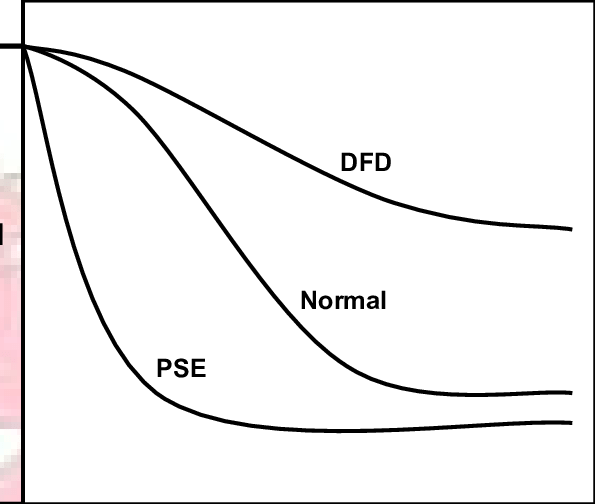 The pattern of acidification in PSE, normal and DFD meat