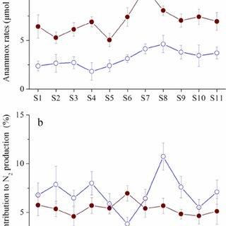 (PDF) Anaerobic ammonium oxidation and its contribution to