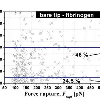 Fibrinogen-to-fibrin polymer formation. A) Activation of