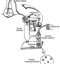 schematic diagram of the spray drying encapsulation method  [ 850 x 1024 Pixel ]