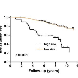 Kaplan-Meier plots illustrate the estimation of survival
