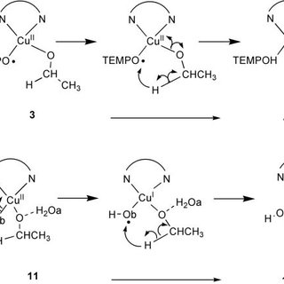 Scheme 2 The reaction mechanism of the alcohol oxidation