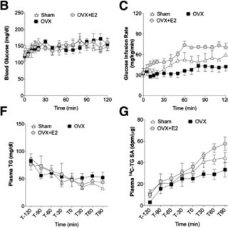 Estrogen treatment reduces body weight but does not