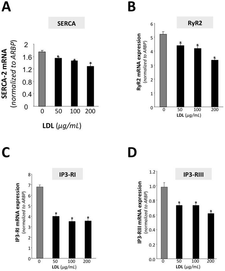 Real-time PCR analysis showing SERCA2 (A), RyR2 (B), IP3