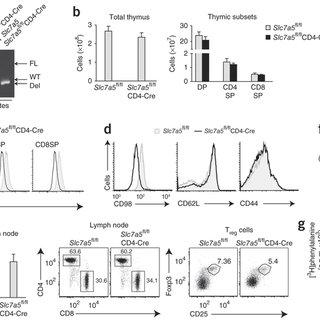 (PDF) Corrigendum: Control of amino-acid transport by