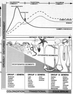 Pictorial diagram showing the ecological succession that characterizes benthic communities through  gradient of environmental disturbance also rh researchgate