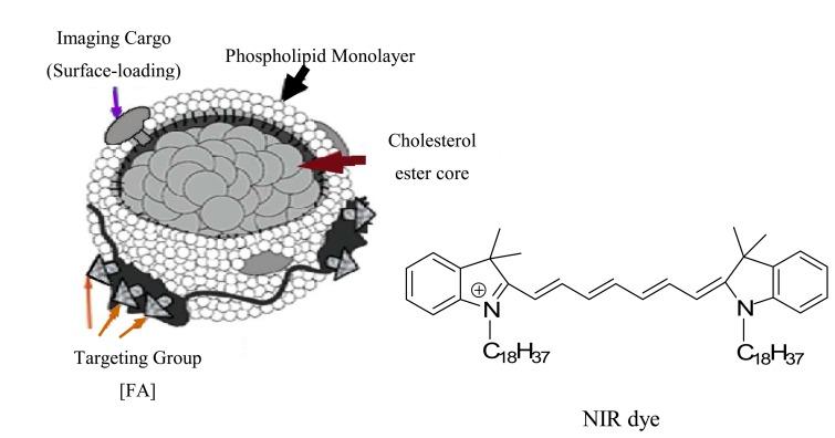Schematic diagram of a hydrophobic NIR dye molecule
