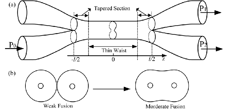 (a) Schematic structure of a fiber directional coupler (b