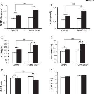 (PDF) Female Mice Lacking Estrogen Receptor-α in